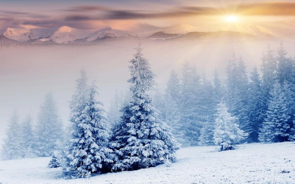 winterimage5